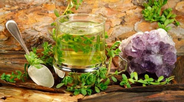 داروهای گیاهی درمان آنفولانزا