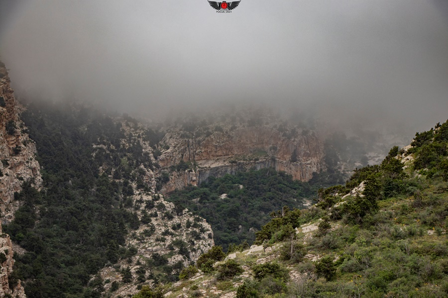 روستای زرد ، طبیعت بکر کوه قرخود ؛ خرداد 1400