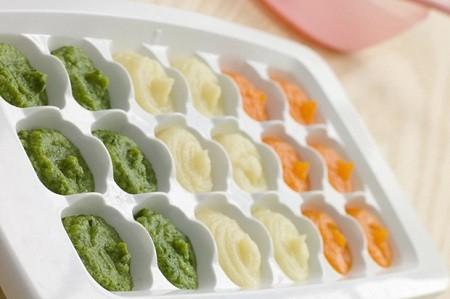 تکنیک صحیح فریز کردن غذای کودک freeze baby food