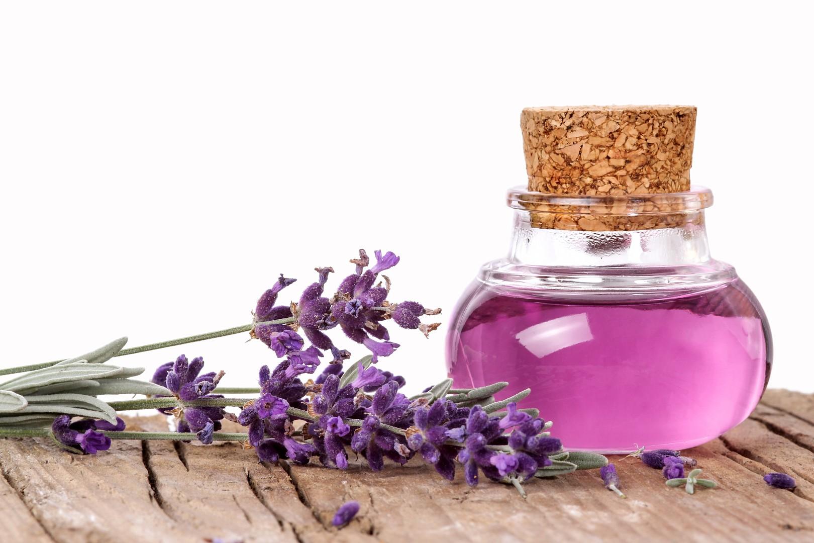 فواید دمنوش گیاه لاوندر یا اسطوخودوس lavender