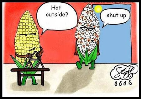 شعر و متن طنز درباره گرما heat